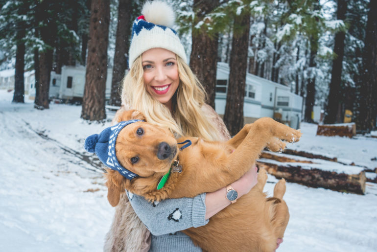 brandi-matthews-brandilocks-beanie-delilah-snow-golden-retriever-FEATURED-1